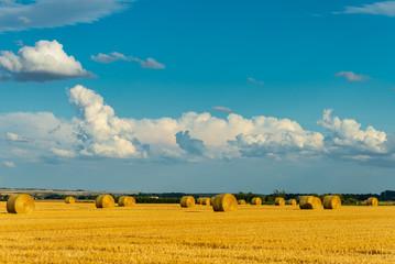 Ballots de paille cylindrique sur un champ de blé coupé, accompagné d'un ciel bleu d'été