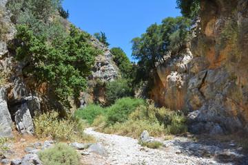 trail through a mountain gorge
