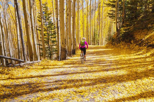 Woman mountain biker enjoying the awesome autumn weather in inner basin trail, Flagstaff, Arizona