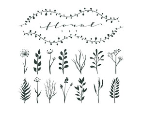 Vector collection of hand drawn flowers. Monochrome illustration of sketch flowers and branches for invitations, greeting cards, quotes, blogs, wedding frames and posters
