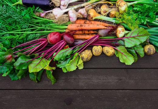 Freshly harvested vegetables on wooden floor outdoor top view