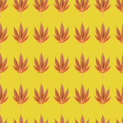 Cannabis leaves - seamless pattern. Yellow background texture for textile, wallpaper