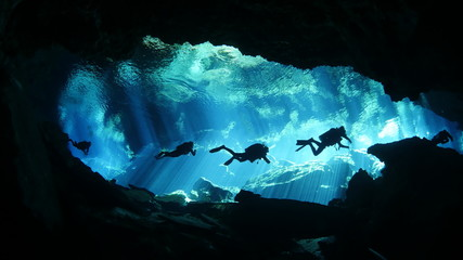 Wall Mural - Diving in cenote