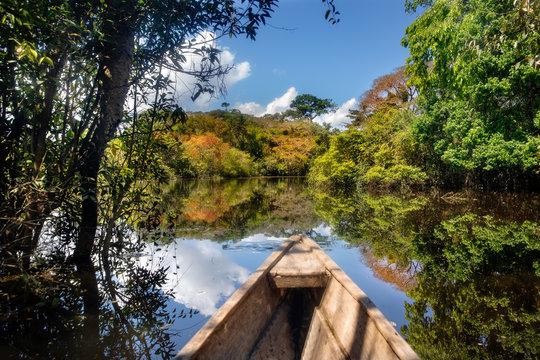 Navegando en un bote de madera a través del bosque inundado en Leticia, región de Amazonas, Colombia.
