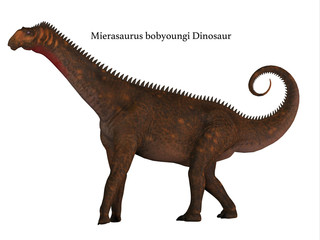 Mierasaurus Dinosaur Side Profile with Font - Mierasaurus was a herbivorous sauropod dinosaur that lived in Utah, USA during the Cretaceous Period.