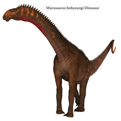Mierasaurus Dinosaur on White with Font - Mierasaurus was a herbivorous sauropod dinosaur that lived in Utah, USA during the Cretaceous Period.