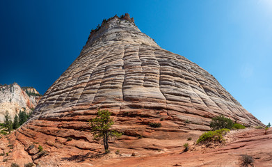 Checkerboard Mesa, Lithified Sand Dune, Zion National Park, Utah, USA
