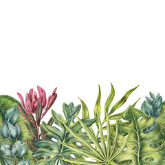 Border, one side frame made of tropical plants - protea, eucalyptus and palms leaves, colored pencil illustration isolated on white background. Hand drawn floral frame - palm leaves and protea flower