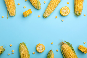 Papiers peints Graine, aromate Flat lay composition with tasty sweet corn cobs on color background