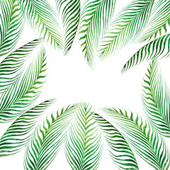 Watercolor frame tropical leaves and branches isolated on white background.