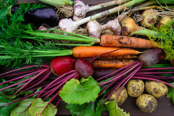 Fotorollo Gemuse Harvest of Fresh organic vegetables