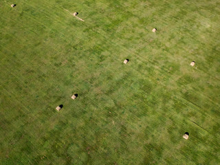 aerial photography of hay bale field in South Dakota agriculture