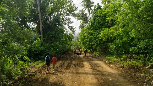 Two children walking on the main road leading around Pentecost island, Vanuatu