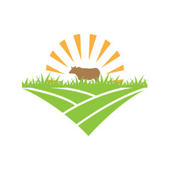 Cow logo design template