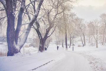 Powdered Helsinki
