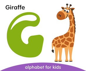 Green letter G and brown Giraffe. English alphabet with animals. Cartoon characters isolated on white background. Flat design. Zoo theme. Colorful vector illustration for kids.