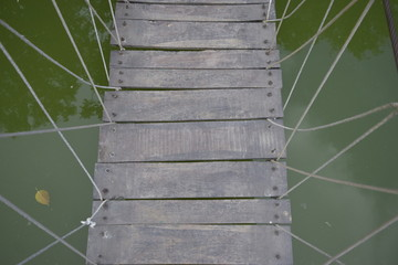 bridge made of wood and rope over a green water body