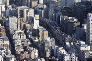 Panoramic view of Tokyo city in Japan