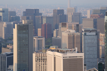 Panoramic view of Tokyo city in Japan