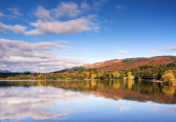 Autumn colour on a hillside at Milarrochy Bay on the banks of Loch Lomond