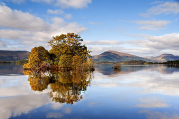 Autumn light illuminates the trees on Loch Lomond as seen from the banks of Milarrochy Bay