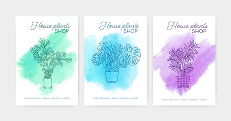 Bundle of vertical poster or flyer templates with indoor plants growing in pots drawn with contour lines against watercolor stains on background. Vector illustration for houseplant shop advertisement.