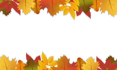 Autumn background with maple, oak and rowan leaves. Fall design with space for your text. Vector