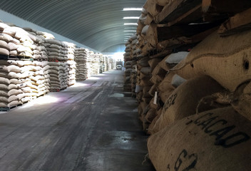 Sacks of cocoa beans are pictured at the warehouses of SAF-Cacao in San Pedro