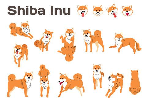 shiba inu,dog in action,happy dog