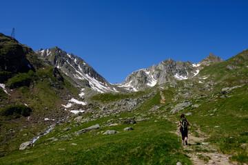 Alpi Svizzere verso il Pizzo Cristallina. Sullo sfondo il pizzo Naret