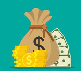 Money saving and money bag icon
