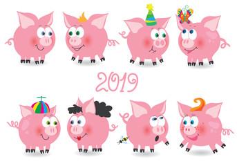 Big pig funny set