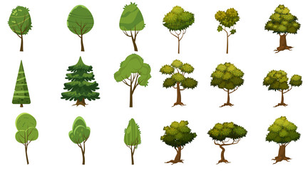 Set of trees of various kinds, cartoon style and stylized, for erg and applications, vector, illustration, isolated