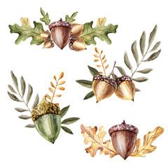 Watercolor autumn leaf acorn oak