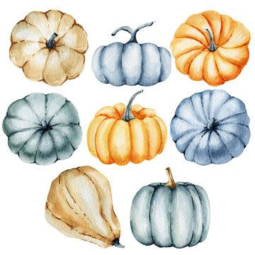 watercolor autum pumpkin