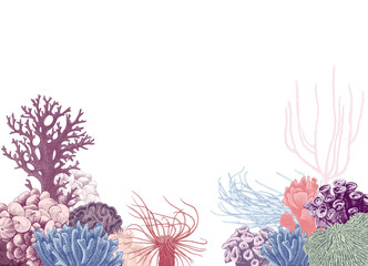 Vector background with colorful coral reef