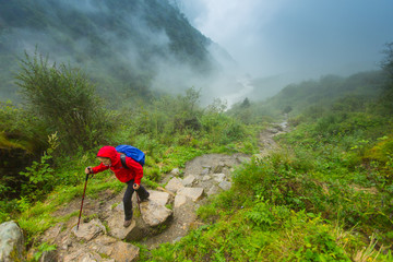 Woman in red rain jacket trekking along wet dirt trail in a lush rainy forest of  Annapurna conservation of Nepal.