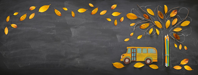 Back to school concept. Top view banner school bus and pencils next to tree sketch with autumn dry leaves over classroom blackboard background.