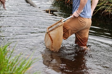 A Caucasian water scientist using a net to catch river insects and fish during an environmental impact study in South Africa.