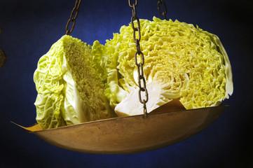 Lactuca sativa Lattuga Iceberg Gartensalat خس 상추 Lettuce Латук посевной