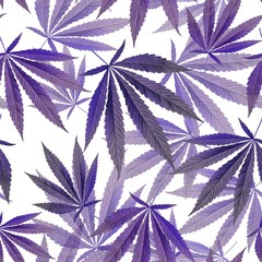 purple leaves on white Background. Seamless pattern with Marijuana, weed, dope. Textile, Wallpaper concept