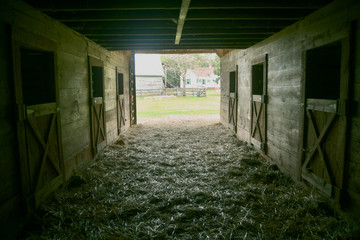 A view from the inside of an old barn looking out to the farmhouse.