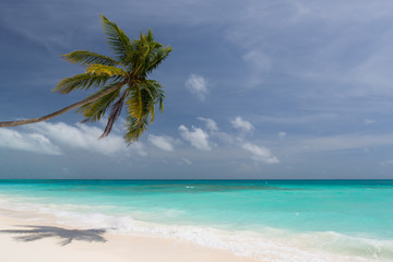 Lonely beach in the Caribbean on a sunny summer day with an almost cloudless sky