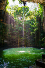 Ik-Kil Cenote near Chichen Itza, Mexico. Cenote with transparent waters and hanging roots