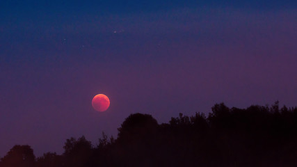 Total lunar eclipse 2018, July blood moon and stars over woodland