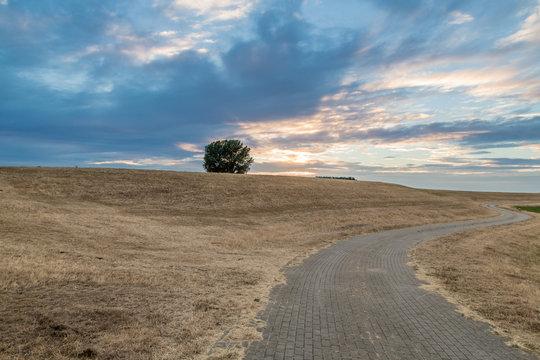 Klimawende – Braun ist das neue Grün