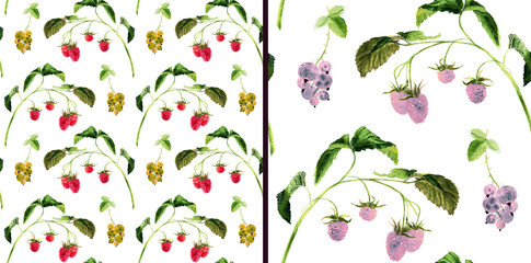 Hand drawn watercolor set of seamless patterns with raspberry twig and currant.