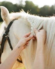 Anonymous woman braiding horse