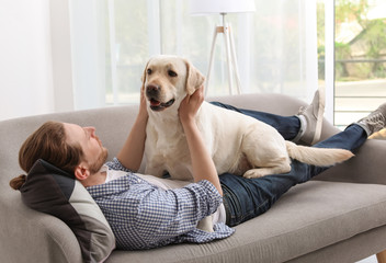 Adorable yellow labrador retriever with owner on couch indoors