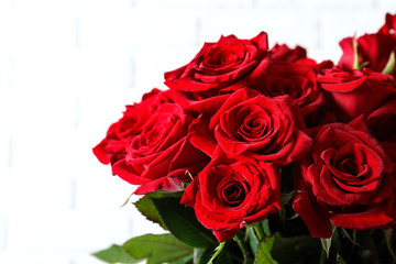 Beautiful red rose flowers on light background